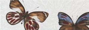 Paper Kelebek