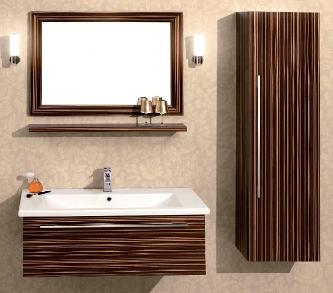 Premium Teos 100 Banyo Dolabı